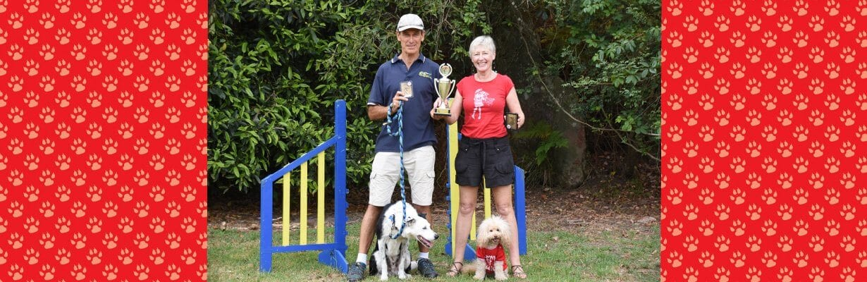 dog competitions northern beaches