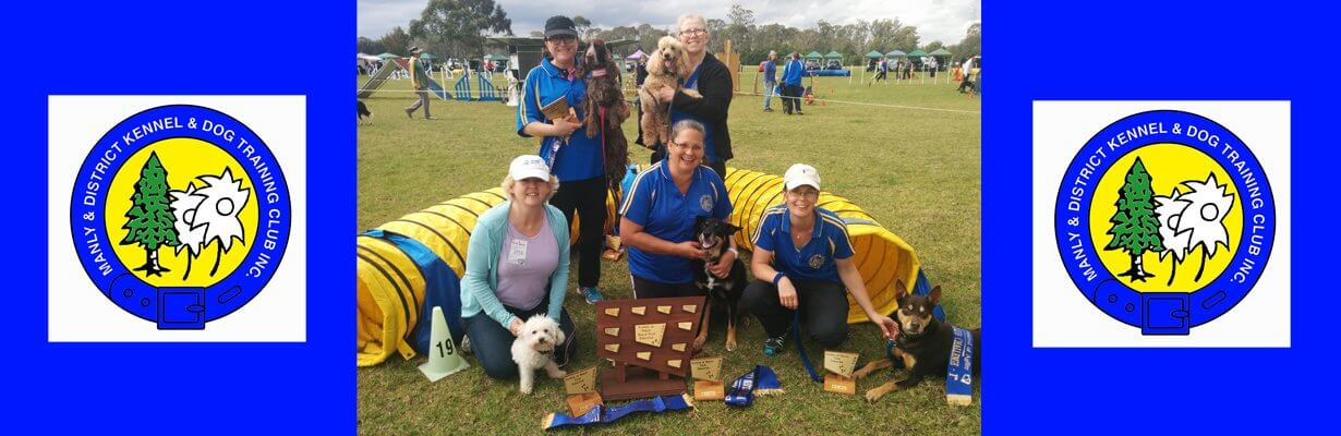 dog agility competitions sydney