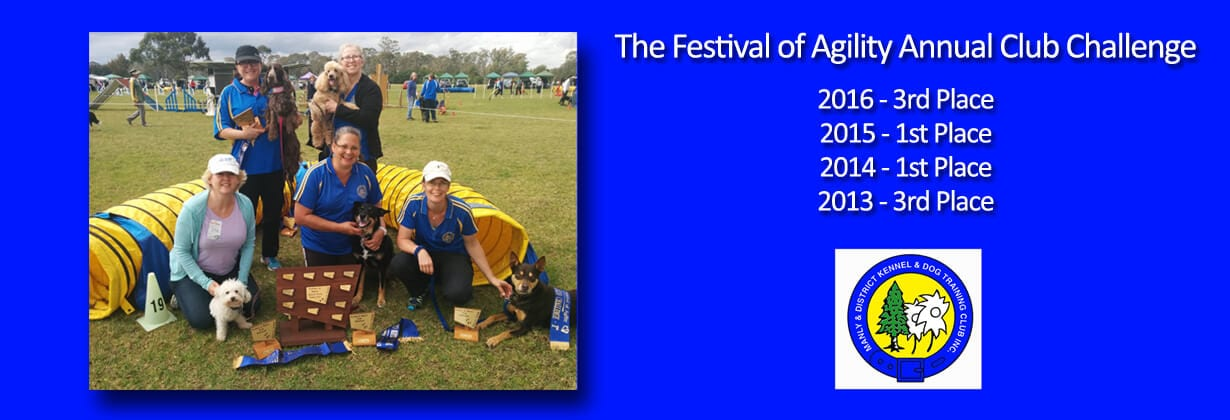 Northern Beaches Dog Obedience Club