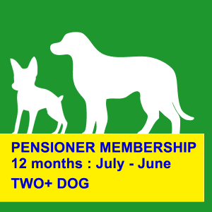 dog obedience training northern beaches 12 months pensioner discount
