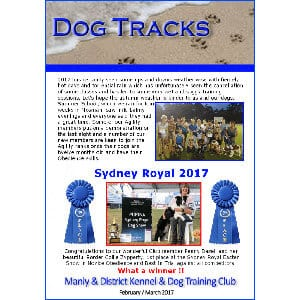 manly dog club newsletter