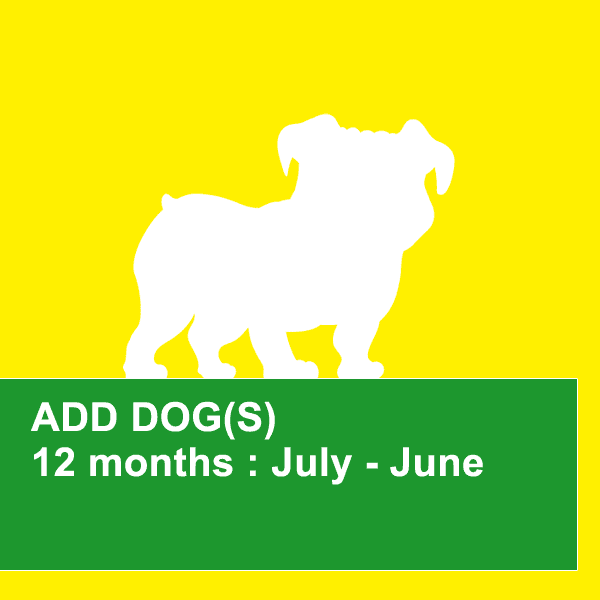 dog obedience training northern beaches 12 month