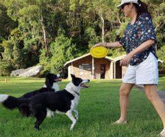 Frisbee 4