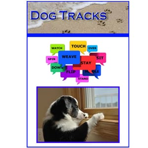 dog training tips newsletter